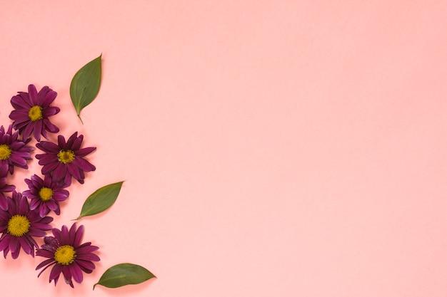 Fleurs roses avec des feuilles sur la table Photo gratuit