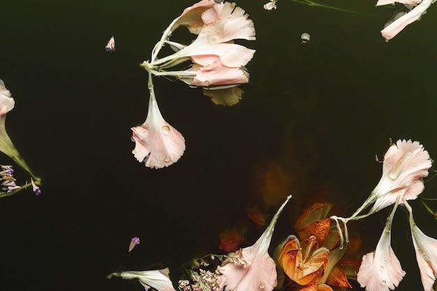 Fleurs Roses Et Orange Dans L'eau Noire Photo gratuit