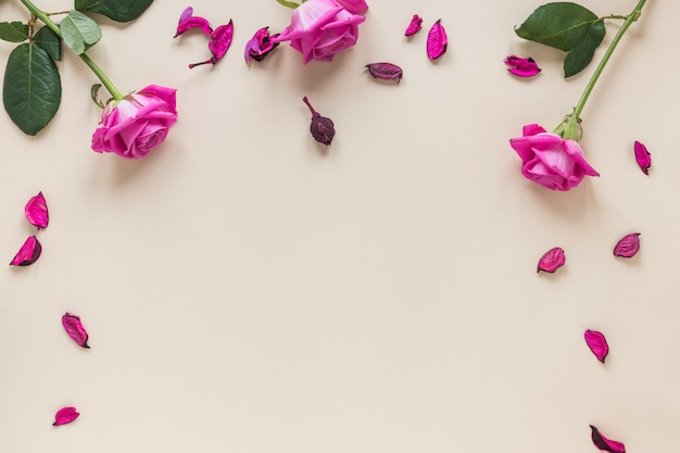 Fleurs Roses Avec Pétales Sur Table Photo gratuit