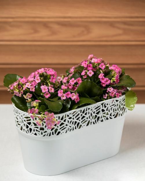 Fleurs roses sur la table Photo gratuit