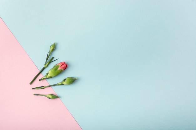 Fleurs simplistes et fond avec espace de copie Photo gratuit