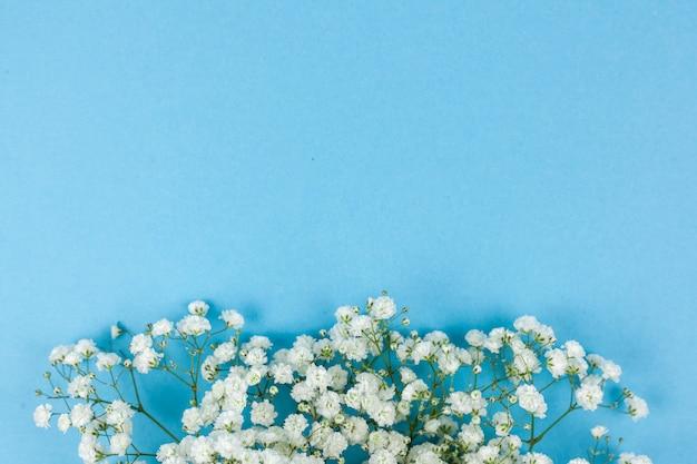 Fleurs De Souffle De Beau Bébé Blanc Disposées Sur Fond Bleu Photo gratuit