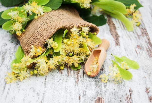 Fleurs de tilleul sur la table Photo Premium