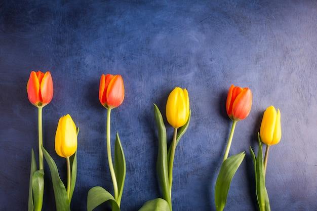 Fleurs De Tulipes Lumineuses Sur La Table Bleue Photo gratuit