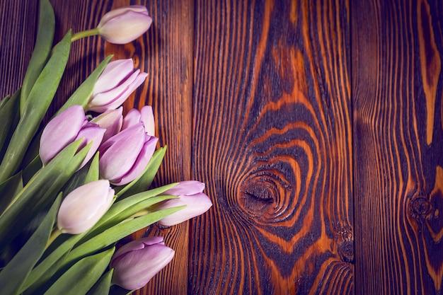 Fleurs de tulipes violettes Photo Premium