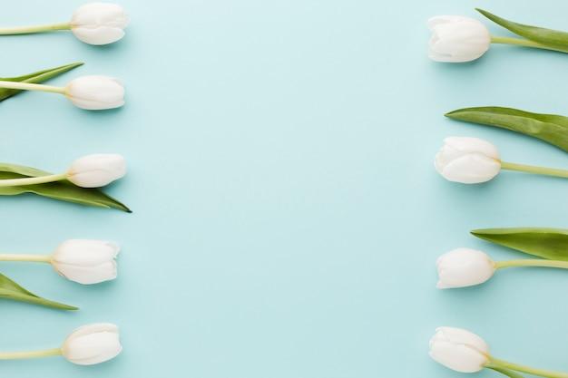 Fleurs De Tulipes Avec Vue De Dessus De L'arrangement Des Feuilles Photo gratuit