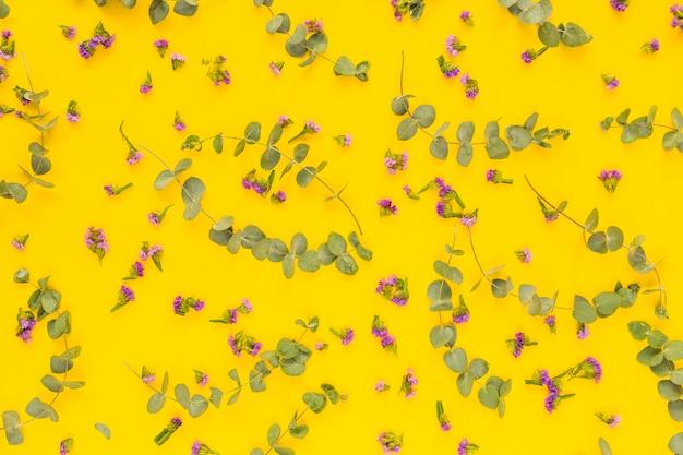 Fleurs violettes et brindilles vertes sur fond jaune Photo gratuit