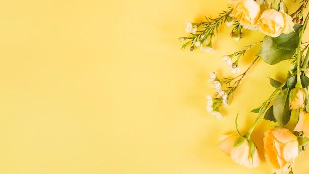 Fleurs Photo gratuit