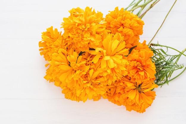 Flor De Cempasuchil, Fleurs Mexicaines Dans Le Jour Des Morts Au Mexique Photo Premium