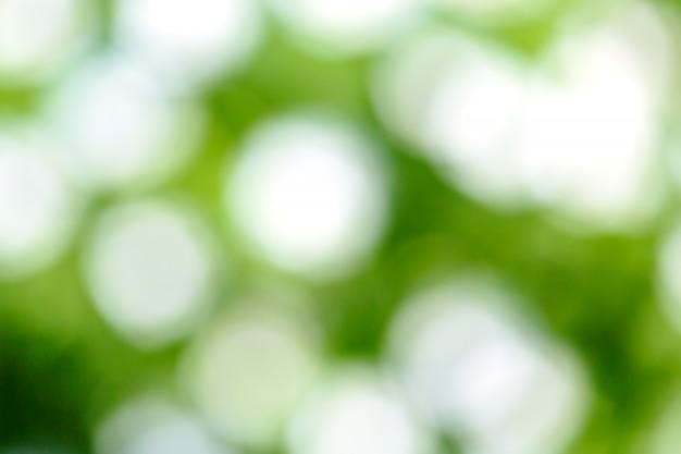 Flou vert frais Photo Premium