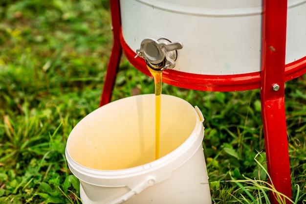 Flux de miel frais coule de l'extracteur de miel dans le seau blanc Photo Premium