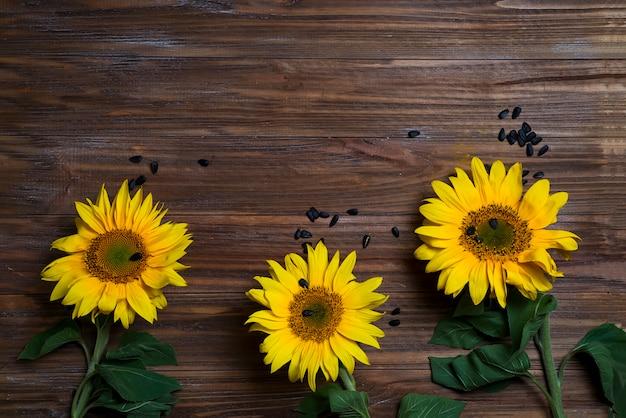 Fond d'automne aux tournesols Photo Premium