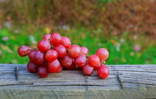 Fond d'automne raisins sur plateau en osier rustique sur un fond jaune laisse. Photo Premium