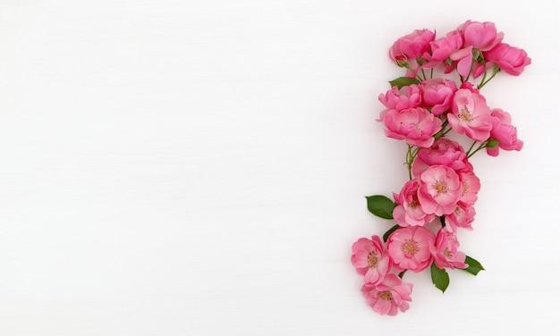 Fond blanc avec des roses roses Photo Premium