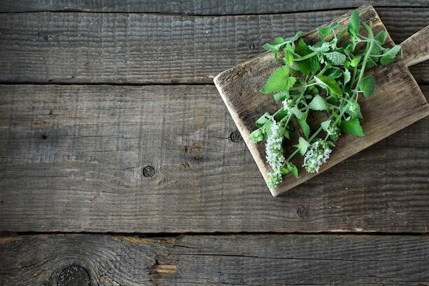 Fond bois menthe verte Photo Premium