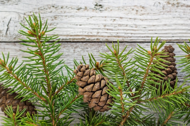 Fond En Bois De Noël Avec Sapin De Neige. Vue De Dessus Avec Espace De Copie Pour Votre Texte Photo Premium