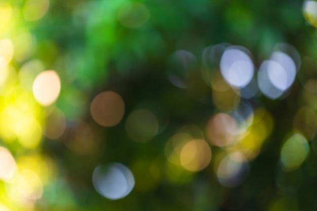 Fond De Bokeh Vert Avec Des Cercles. Thème Abstrait De L'été. Photo Premium