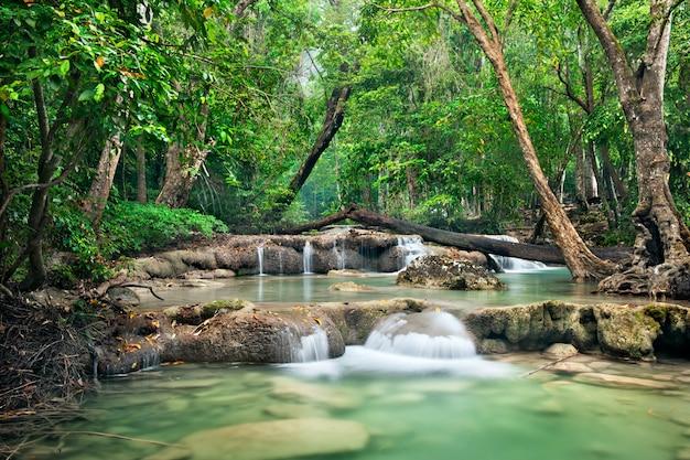 Fond de cascade en streaming dans un parc national dans la jungle de forêt profonde sur la montagne. Photo Premium