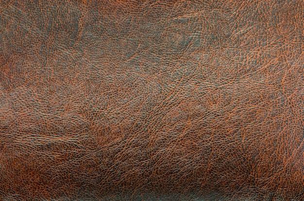 Fond de cuir de peau Photo Premium