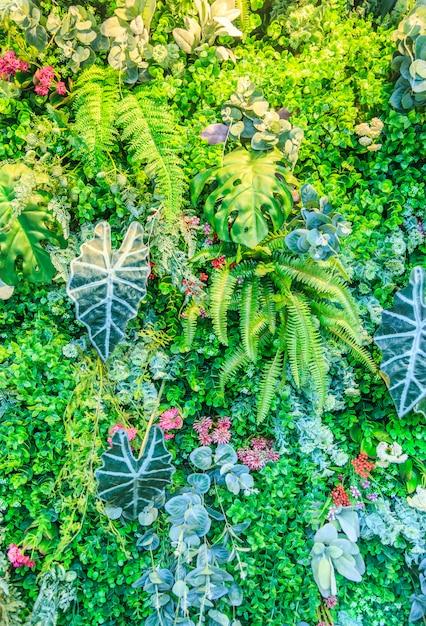 Fond d'écran, atmosphère de parc, plante, belle herbe Photo gratuit