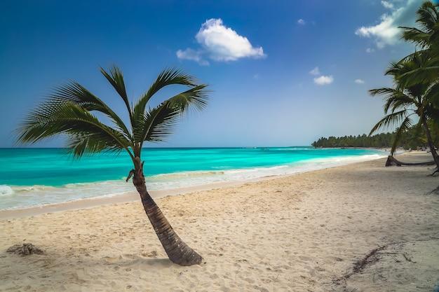 Fond D'écran De Vacances Vacances D'été Photo Premium