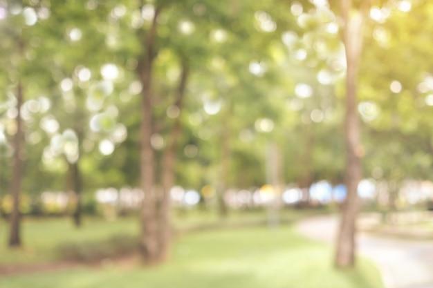 Fond extérieur de nature automne floue, flou fond de parc vert Photo Premium