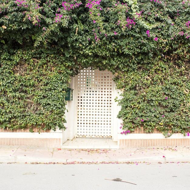 Fond de façade de clôture de jardin Photo Premium