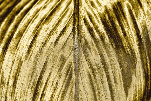 Fond de feuille d'or Photo gratuit