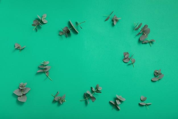 Fond De Feuilles Vertes D'eucalyptus Photo Premium