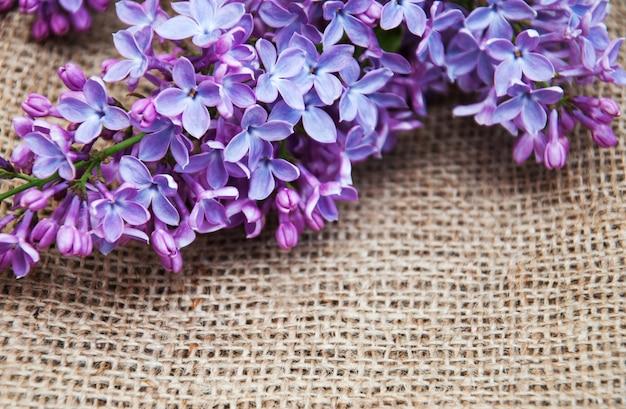 Fond de fleurs lilas Photo Premium
