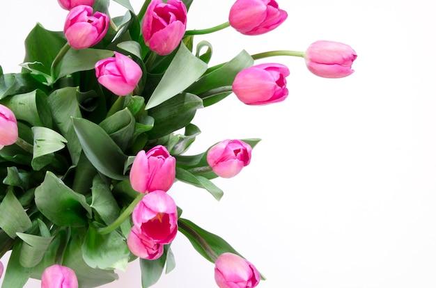 Fond floral avec des fleurs de tulipes sur fond blanc. lay plat, vue de dessus. belle carte de voeux avec des tulipes pour la fête des mères, un mariage ou un événement heureux Photo Premium