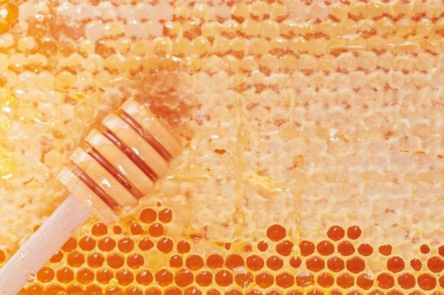 Fond frais de nid d'abeilles Photo Premium
