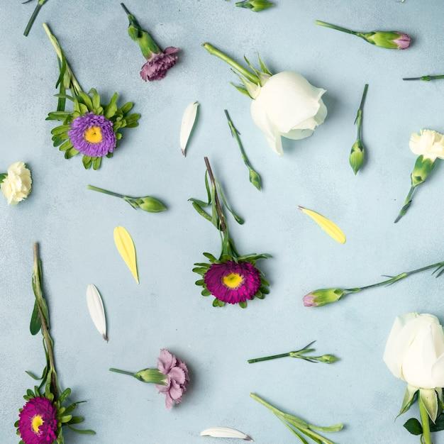 Fond de gros plan avec des marguerites et des fleurs roses Photo gratuit