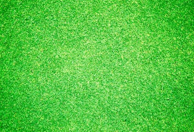 Fond d'herbe verte Photo Premium