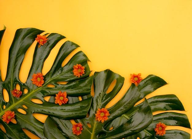 Fond jaune tropical Photo gratuit