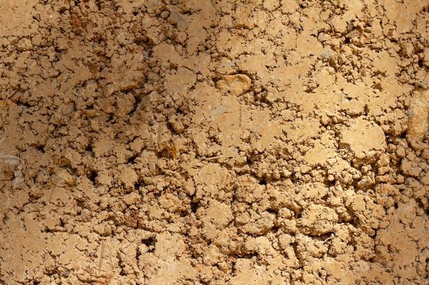 Fond de mur fait d'argile de moule d'argile dans une maison d'habitation Photo Premium