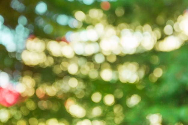 Fond de nature floue Photo Premium