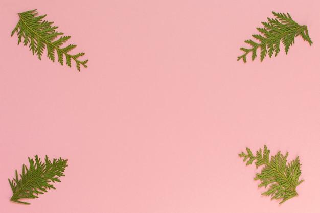 Fond De Noël Festif, Branches De Sapin Sur Fond Rose, Mise à Plat, Vue Du Dessus Photo Premium