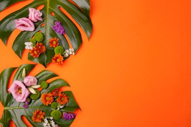 Fond orange tropical Photo gratuit
