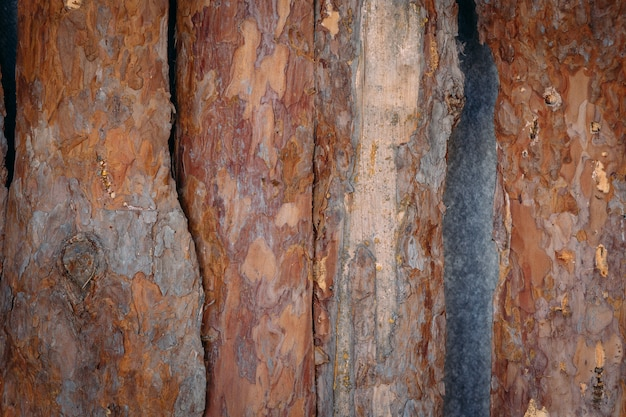 Fond de planche, fond en bois grunge. texture du bois. fond en bois naturel Photo Premium