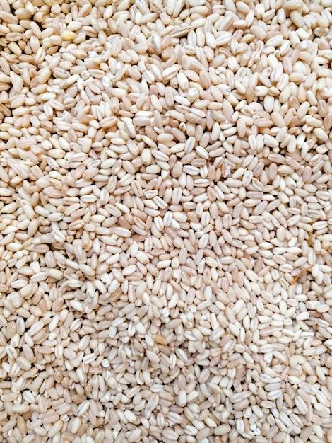Fond de riz blanc Photo gratuit