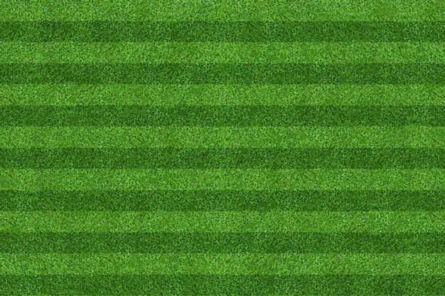 Fond de terrain d'herbe verte pour les sports de football et de football Photo Premium