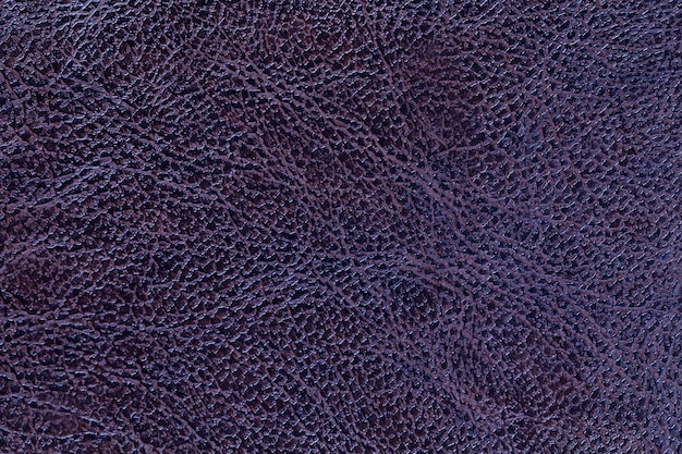 Fond de texture de cuir violet foncé laqué, gros plan. toile de fond bleu marine Photo Premium