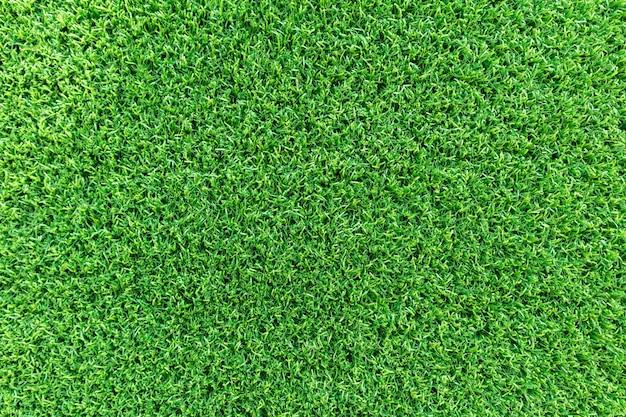 Fond de texture d'herbe pour parcours de golf Photo Premium