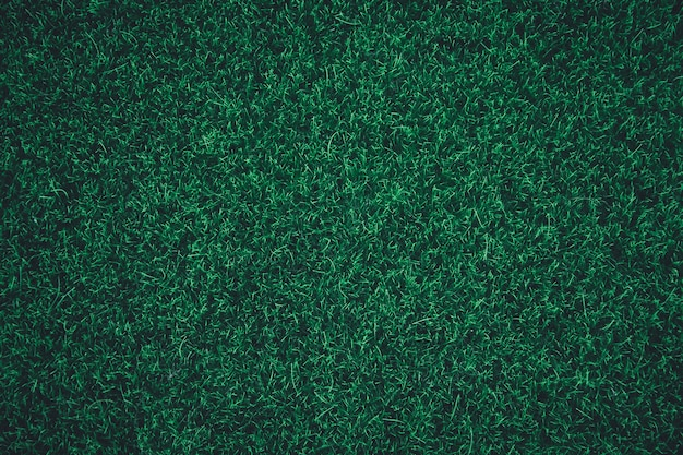 Fond de texture d'herbe verte. Photo Premium