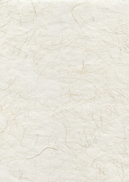 Fond De Texture De Papier Recyclé Japonais Naturel | Photo Premium