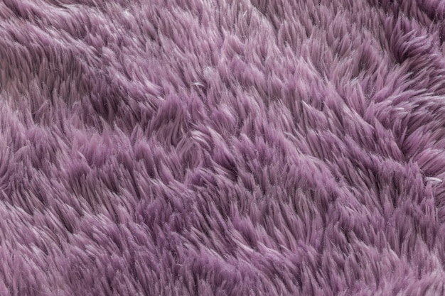 Fond de texture tapis violet Photo Premium