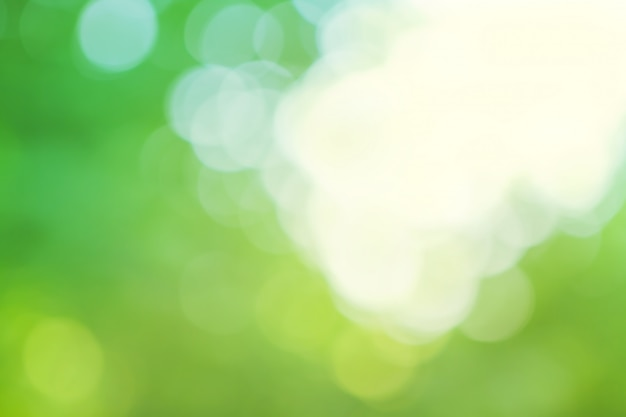 Fond vert et bleu flou Photo Premium