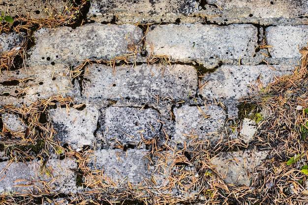 Fond Vide Vieux Mur De Briques Recouvert De Mousse. Photo gratuit