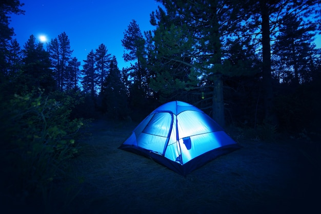 Forest camping - tente Photo gratuit